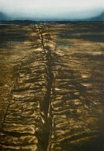 Erdriss, 1981