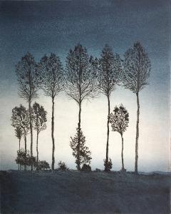 Naturobjekt (Baumgruppe), 1978