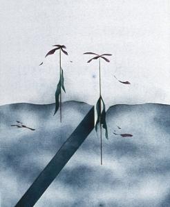 Erdriss mit absterbender Vegetation, 1973