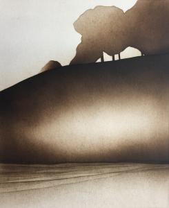 Waldstück, 1975
