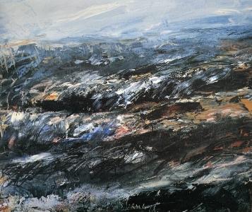 Acker (Studie), 1988