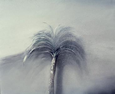 Palme und einsetzender Regen, 1983