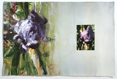 Tagebuch (Iris Chamaeiris), 1992