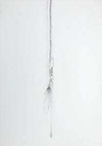 Strandgut 6, 1977